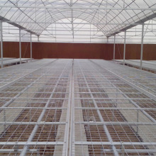 High Quality for Greenhouse Seedling Bed Greenhouse Rolling Bench for seedling nursery export to Indonesia Exporter
