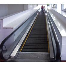Srh China Fábrica Original Design Movimento Automático Walk