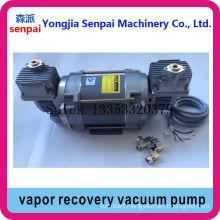 Dull Double-Heads 220V/380V Vapor Recovery Pump Vacuum Pump