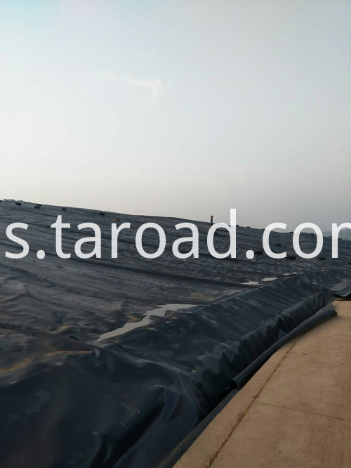 LDPEGEomembrane8_COPY