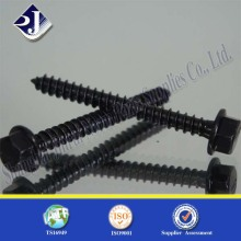 Chine Fournisseur Jinrui High Hex Hex Flange Wood Screw