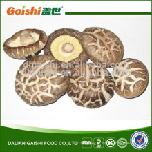 Cogumelo de fungos comestível, bom gosto secou cogumelo de shiitake