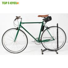 DS-1 ebike 2017 city cycling road ebike pedal assist 250w single speed ebike