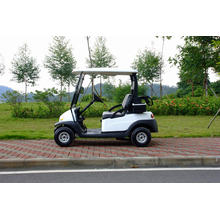 2 Seater Electric Golf Trolley (4 wheels)
