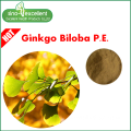 Ginkgo Biloba Extract with USP Standard