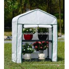 Economic mini garden green house