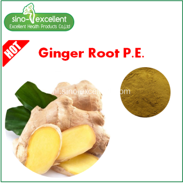 Ginger Root Extract poeder Gingerols