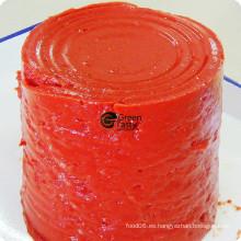 Nuevo Crop Pasta de Tomate en Conserva
