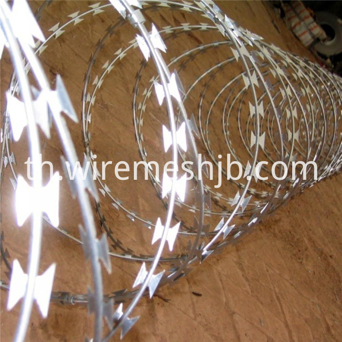 Galvanized Concertina Wire