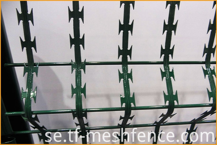 welded concertina razor wire mesh 7