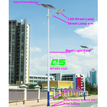 WPSRR-8503 3~15m Municipal Road Hot DIP Galvanized Steet Light Pole style