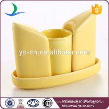 Neuer Entwurf kundenspezifischer keramischer Shaker u. Schale für Küche