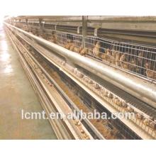 La última investigación de la fábrica y el desarrollo de la caja de huevos de codorniz