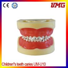 Lower Price Dental Jaw Dental Teeth Model for Study