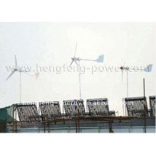 Alternative Energie Generator Windkraftanlage 300w