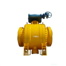 Samping catatan Trunnion Ball Valve