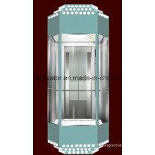 Ascenseur panoramique avec gravure décorative (JQ-A029)