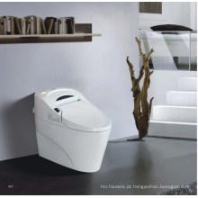 Toalete inteligente de PP / Ceramic Boday (W1508)