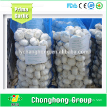 Factory Directly Supply Fresh Garlic with Best Quality