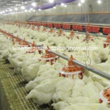 Automatische Geflügelausrüstung der hohen Qualität für Züchter House