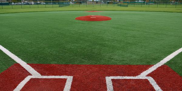 Baseball Field Grass