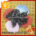 Chine Ningxia aliments naturels Black goji berry / au meilleur prix