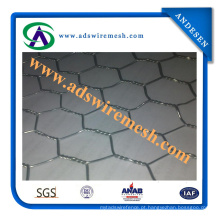 Malha de metal hexagonal (ADS-HWM-09)