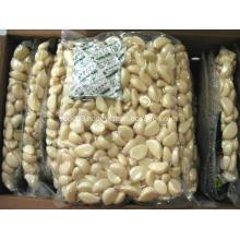 New Harvested Fresh Peeled Garlic