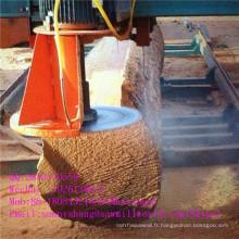 Machine de scierie à angle de coupe à double lame de scie à bois informatisée