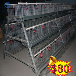 chicken house Cage/agricultural equipment