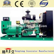 Paou 6135ZD Grupo electrógeno diesel
