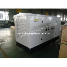 16kw / 20kva Cummins Diesel Generator Set With Brushless Alternator