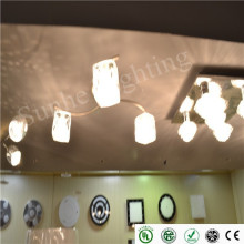 new arrival hall room led pendant/ceiling light dimmable surface mounted