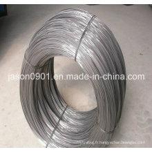 Fil de sphéroïdisation, fil d'acier, usine de fil d'acier inoxydable