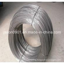 Spheroidizing Wire, Steel Wire, Stainless Steel Wire Factory