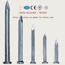 Chinese Iron Nails Coil Nails Concrete Nails Nail Gun Bullet