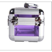 Os pequenos casos de maquiagem de acrílico duro duro (hx-q059)
