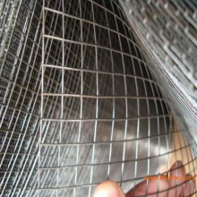 Electro-Galvanized Square Welded Wire Mesh