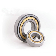 types of bearings cylindrical roller bearings NU 1005M