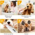 Haustierhaarschneider Günstiger individueller Haustierhund