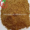 Semillas orgánicas de bayas de goji para plantar árboles