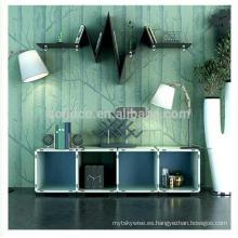 Gabinetes de bricolaje para el diseño de la sala de estar