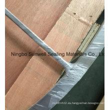 Junta de doble junta de gas Ti materiales de grafito (sunwell)
