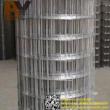 Verzinkte PVC-beschichtete Edelstahl-geschweißte Maschendraht