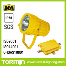 Explosion Proof Spotlight (DGS70/127B(A))