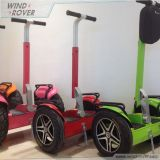 Electric Scooter 2 Wheel Self Balance Scooter Segway