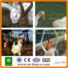 animal fence hexagonal wire mesh/zoo fencing hexagonal wire mesh(ISO9001:2008 professional manufacturer)