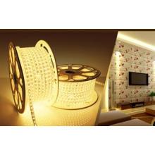 Tira LED 220 / 110V Luz LED LED