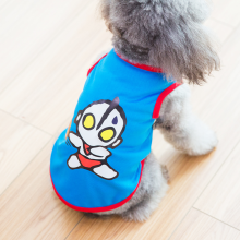 Designer cute dog clothes
