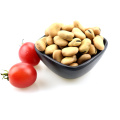High Quality Dry Broad Beans